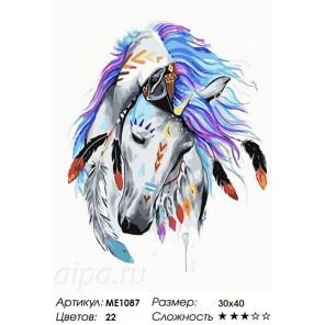 Количество цветов и сложность Индейская красотка Раскраска картина по номерам акриловыми красками на холсте Menglei