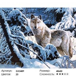 Количество цветов и сложность Одинокая волчица Раскраска картина по номерам на холсте