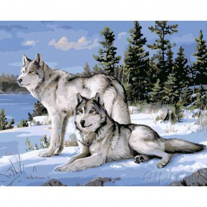 Волки на снегу Раскраска картина по номерам на холсте