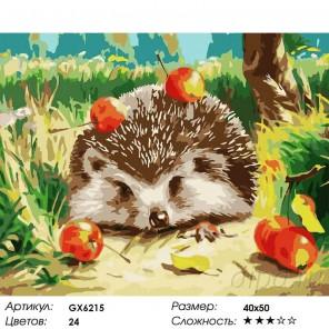 Ежик и яблоки Раскраска картина по номерам на холсте