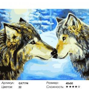 Количество цветов и сложность Знакомство в зимнем лесу Раскраска картина по номерам на холсте