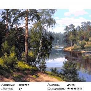 Заповедный край Раскраска картина по номерам на холсте