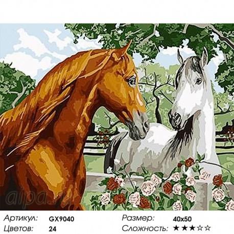 Количество цветов и сложность Пара лошадей Раскраска картина по номерам на холсте