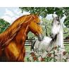 Пара лошадей Раскраска картина по номерам на холсте