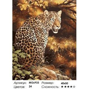 Количество цветов и сложность Прекрасный Леопард Раскраска по номерам на холсте Menglei