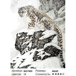 Количество цветов и сложность Снежный барс на скалах Раскраска картина по номерам на холсте Menglei