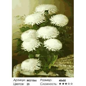 Белые хризантемы Раскраска картина по номерам на холсте Menglei