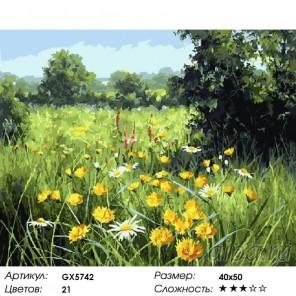Русское поле Раскраска картина по номерам на холсте