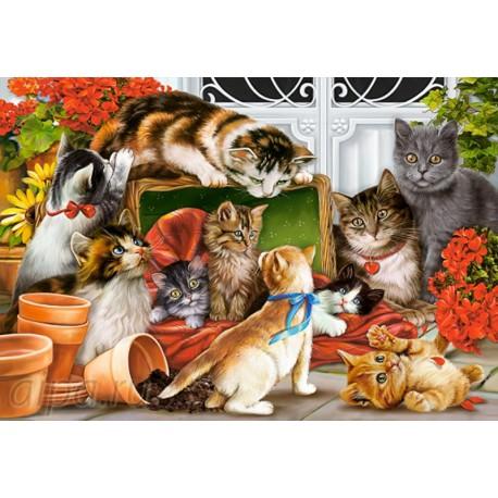 Коробка Кошки-мышки Пазлы Castorland
