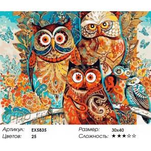 Количество цветов и сложность Разноцветные совушки Раскраска картина по номерам на холсте