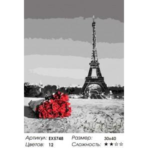 Количество цветов и сложность Букет из Парижа Раскраска картина по номерам на холсте
