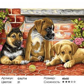 Количество цветов и сложность Три друга Раскраска картина по номерам на холсте