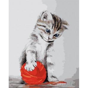 Котенок с красным клубком Раскраска картина по номерам на холсте Menglei