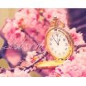 Время цветения сакуры Картина по номерам на дереве