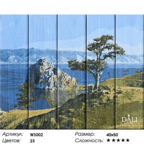 Байкальская жемчужина Картина по номерам на дереве Dali