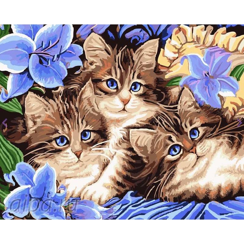 Раскраска по номерам Котята в цветах картина 40х50 см на ...