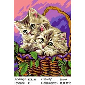 Количество цветов и сложность Котята на пикнике Раскраска картина по номерам на холсте