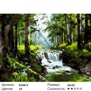 Количество цветов и сложность Пороги на лесной реке Раскраска картина по номерам на холсте