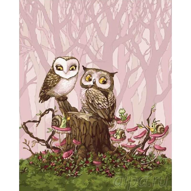 Раскраска по номерам Свидание в лесу картина 40х50 см на ...
