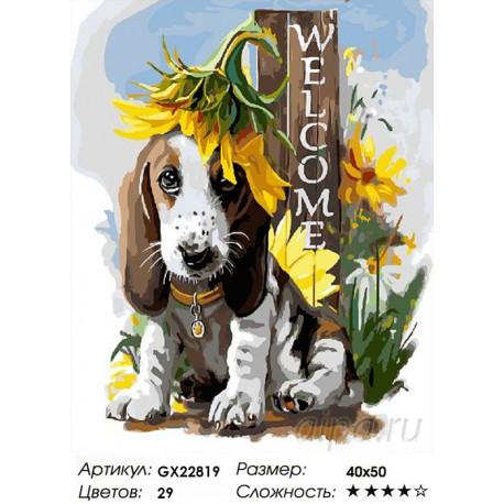 Количество цветов и сложность Добро пожаловать Раскраска картина по номерам на холсте