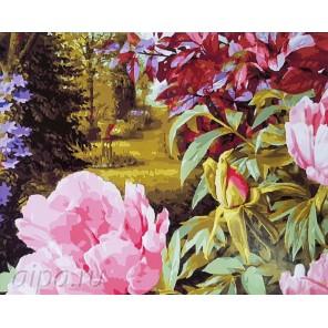 Цветущие пионы Раскраска картина по номерам на холсте