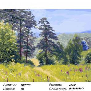 Количество цветов и сложность По лесной тропинке Раскраска картина по номерам на холсте