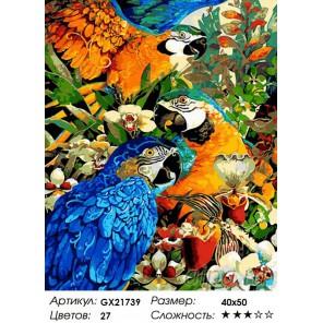 Количество цветов и сложность Попугаи в цветущем саду Раскраска картина по номерам на холсте