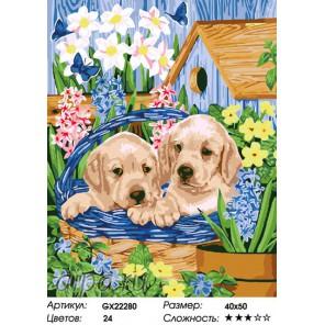 Количество цветов и сложность Щенки в цветнике Раскраска картина по номерам на холсте