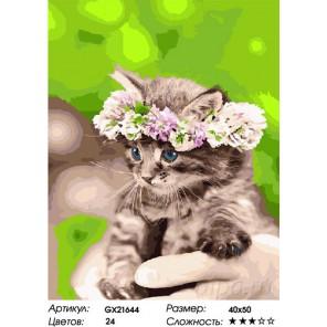 Количество цветов и сложность Котенок в венке Раскраска картина по номерам на холсте