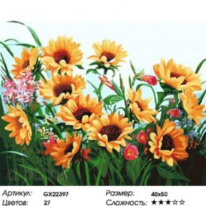 Количество цветов и сложность Подсолнухи в саду Раскраска картина по номерам на холсте