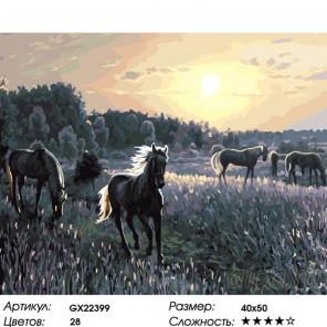 Количество цветов и сложность Табун на закате Раскраска картина по номерам на холсте