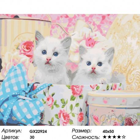 Количество цветов и сложность Белые котята Раскраска картина по номерам на холсте