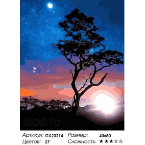 Количество цветов и сложность  Под светом звезд Раскраска картина по номерам на холсте