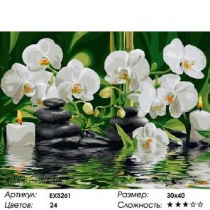 Белые орхидеи Раскраска картина по номерам на холсте