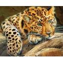 Африканский леопард Алмазная мозаика на подрамнике