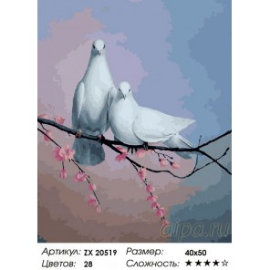 Голубиная верность Раскраска картина по номерам на холсте