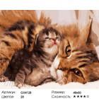 Количество цветов и сложность Кошка с котенком Раскраска картина по номерам на холсте