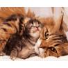 Кошка с котенком Раскраска картина по номерам на холсте