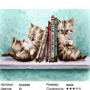 Количество цветов и сложность Кошачьи премудрости Раскраска картина по номерам на холсте