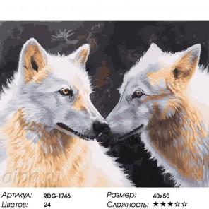 Белые волки Раскраска картина по номерам на холсте
