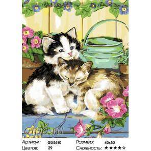 Котята и лейка Раскраска картина по номерам на холсте