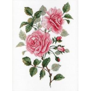 Садовые розы Набор для вышивания МП Студия