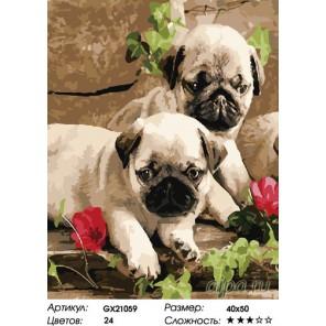Количество цветов и сложность Щенки мопса Раскраска картина по номерам на холсте
