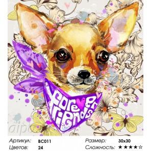 Количество цветов и сложность Друзья навсегда Раскраска - открытка по номерам с декором Color Kit BC011