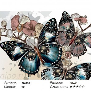 Бабочки и орхидеи Раскраска - открытка по номерам с декором Color Kit