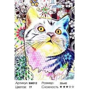 Сложность и количество цветов Кот в стиле Арт Раскраска - открытка по номерам с декором Color Kit BM012