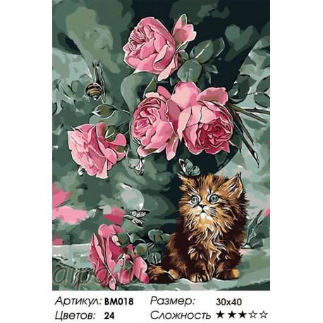 Сложность и количество красок Нежное утро Раскраска - открытка по номерам с декором Color Kit BM018