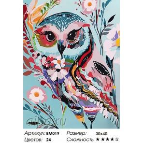 Волшебная сова Раскраска - открытка по номерам с декором Color Kit
