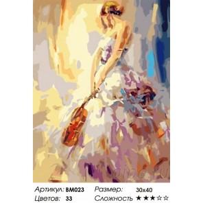 Количество красок и сложность Музыка души Раскраска - открытка по номерам с декором Color Kit