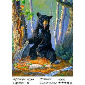 Количество цветов и сложность Сладкоежка Раскраска картина по номерам Color Kit